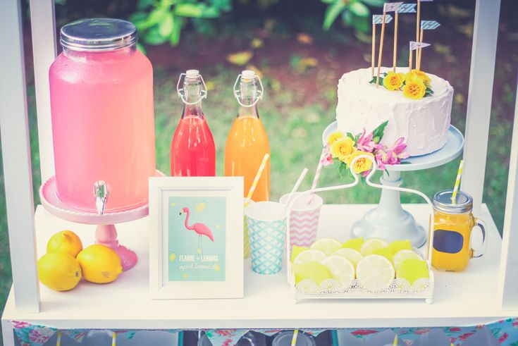 lemonade stand flamingo party festa infantil barraca limonada blog brasilia