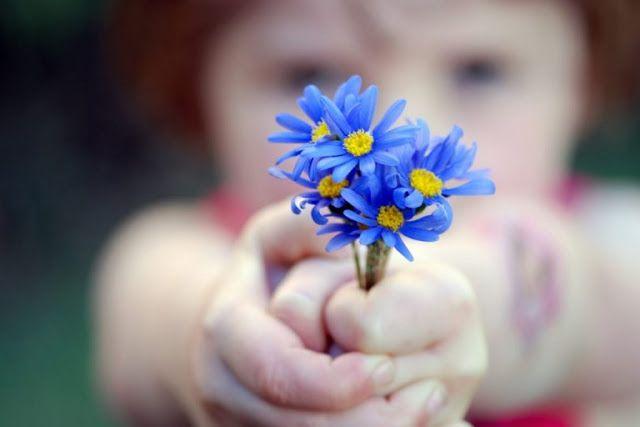 Hoje vou falar um pouquinho sobre a gratidão, essa virtude tão maravilhosa capaz de operar ver...