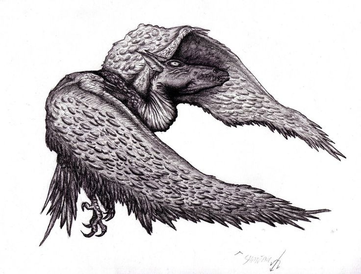 Lovecraft - Shantak Bird by KingOvRats.deviantart.com on @DeviantArt