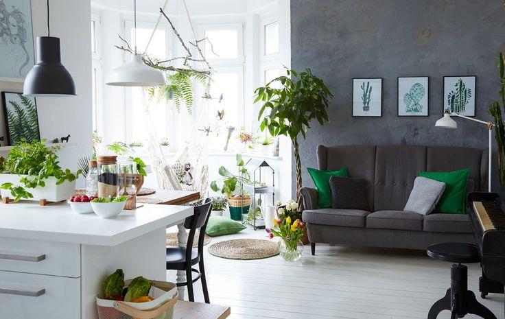 Margo har fyldt sit hjem, der har en åben indretning i hvid, med planter for at bryde alt det hvide