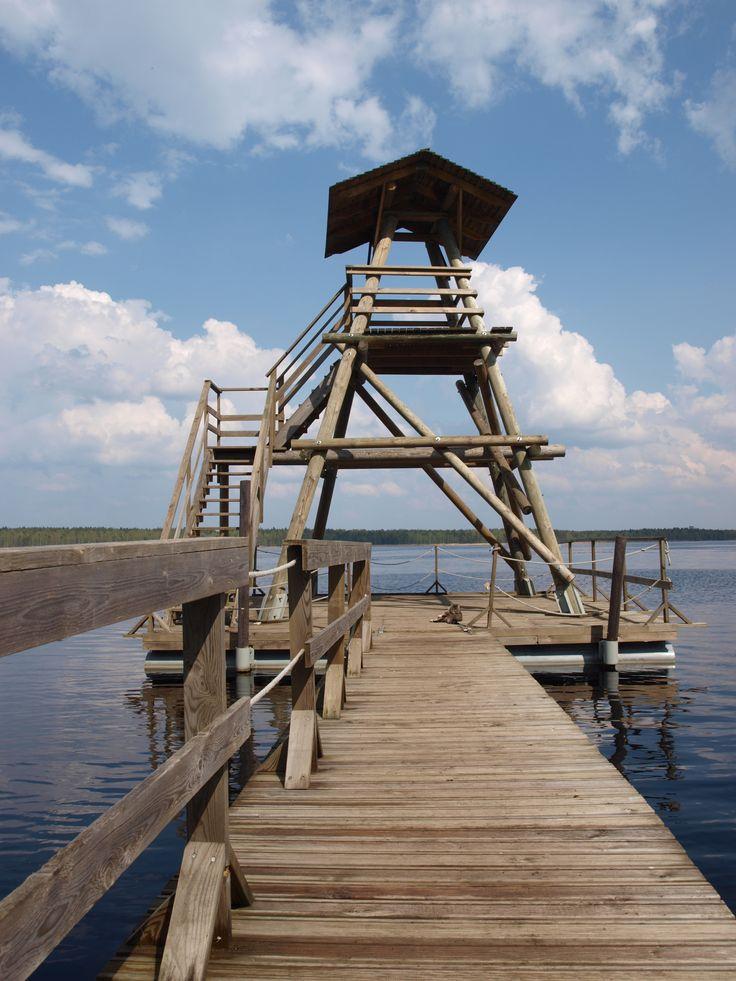 Vogelobservatiepost in #Kemeri Nationaal Park, vlakbij #Riga