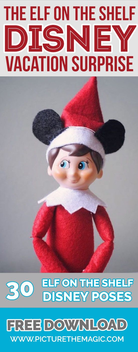Elf on the Shelf Disney Vacation Surprise