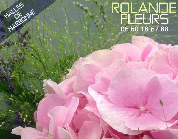 Votre Artisan Fleuriste Rolande vous souhaite la bienvenue sur son site en ce mois d'octobre automnale... À l'étal de fleurs de Rolande dans les halles de Narbonne, comme une petite boutique campagnarde, un étal chic et champêtre en plein cœur des halles...