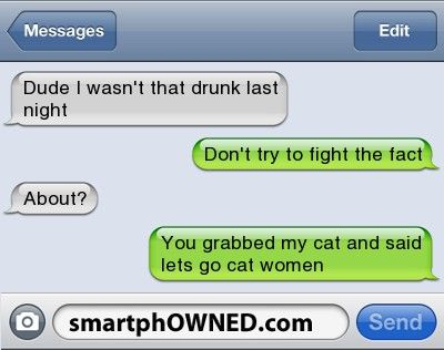 Dude I wasn't that drunk last night | Don't try to fight the fact | About?  | You grabbed my cat and said lets go cat women