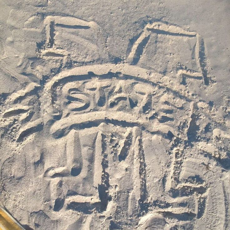 St Petersburg says Hail State!! 12-26-2016