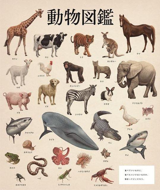 「動物図鑑」。2014年度新聞広告クリエーティブコンテスト優秀賞を受賞=TBWA HAKUHODO提供