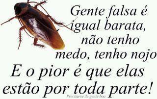 www.cuidado amigas com pessoas falsas.com | Recados para Facebook de Gente falsa é igual barata