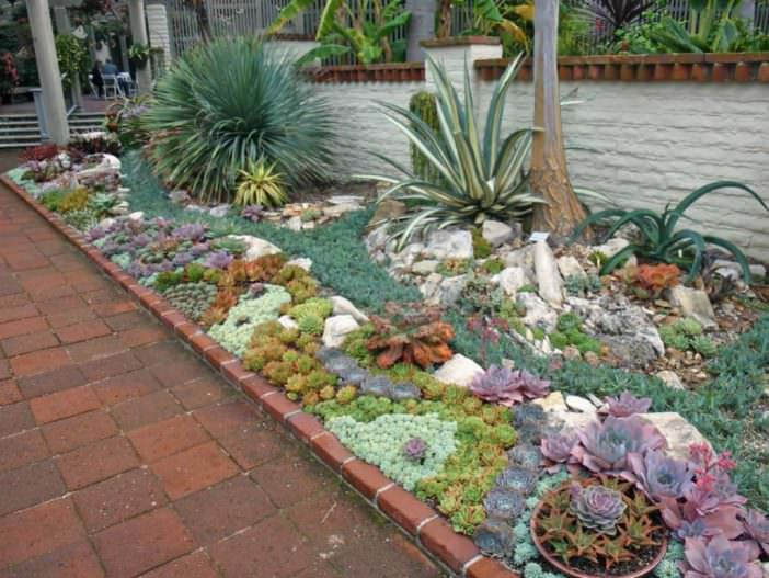How To Plant An Outdoor Succulent Garden Succulent Garden Design