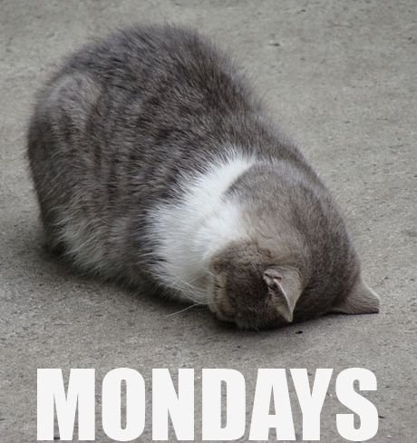 Jede Woche erneut :(