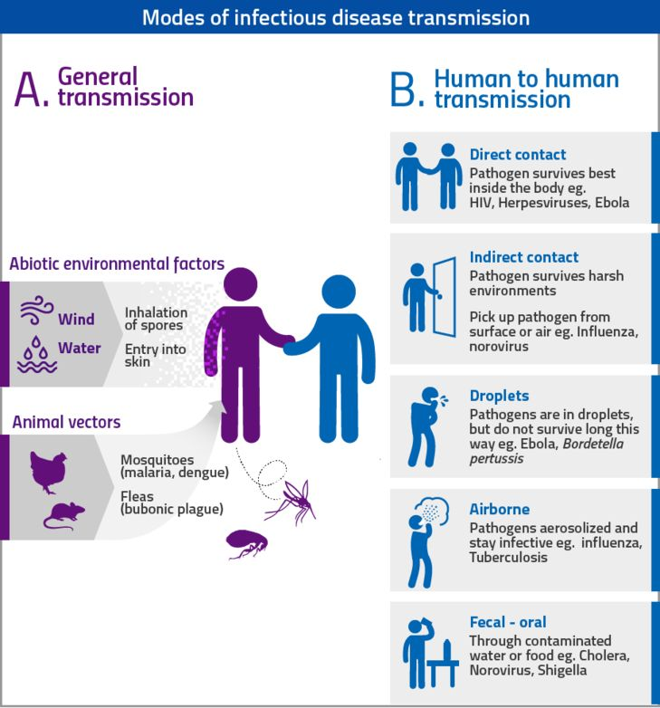 Modes of infectious disease transmission - An accessible ...