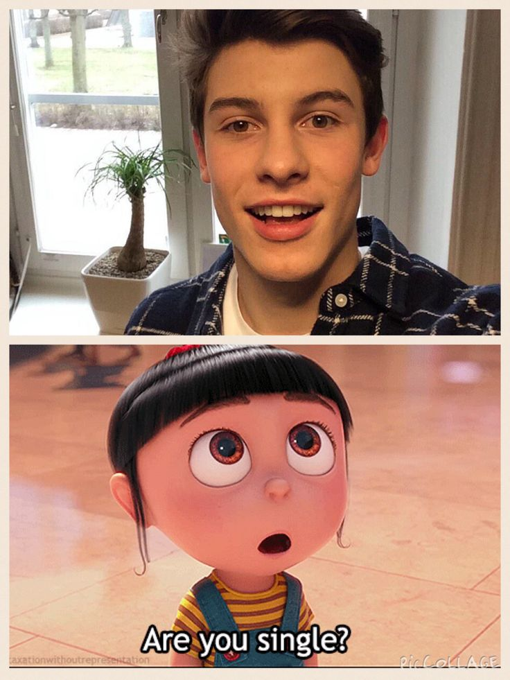 ♡how I look at Shawn Mendes. I screamed when I found out he was performing on Pitbull's New Years Eve celebration