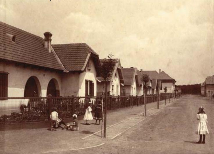 Utcarészlet földszintes házakkal (1910 körül)