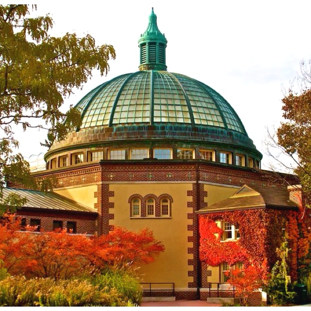 Best 25 detroit zoo ideas on pinterest detroit michigan for Top 10 things to do in detroit