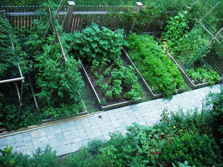 Good Tomato Trellis Idea Vegetable Gardens Pinterest 400 x 300