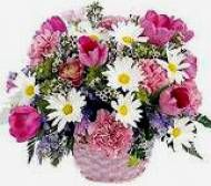 Shopping online Flower Mixed Basket for Pune delivery. Assured door step delivery to all location in pune without any delivery charges.  Visit our site : www.puneflowersdelivery.com/flowers/birthday-flowers-to-pune.html