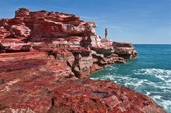 Visit Gantheaume Point in Broome for a spectacular view, also the site of the dinosaur footprints, the ancient lighthouse and Anastasia's pool. Approximately a 10 minute drive from the Pearle resort. Free entry.