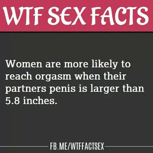 Wtf Sex 120