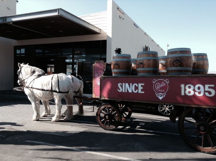 #Heritage Day at Shimmy Beach Club, Cape Town. Castle Lager horse and cart parking