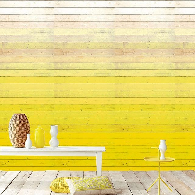 Love an ombre wall? How about a yellow ombre wall? This beautiful texture is actually a wallpaper not timber! And the ombre effect means that the intensity of the yellow is not too overwhelming - such a great idea! The wallpaper is from the Eiffjinger Ibiza collection from Resene. Where would you love this look at home? Photo Aspiring Walls #Resenewallpaper #Reseneyellows #timberlook #benchlife #Resenelovescolour #Resene