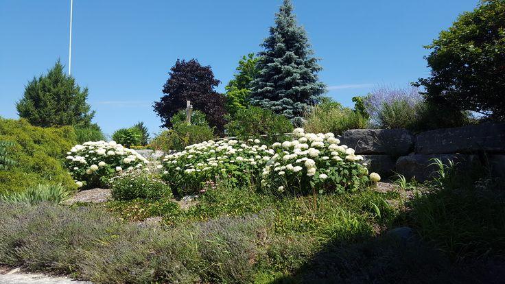 JULY 23, 2016  Pine Knot Golf & CC  5421  Hamilton Road at Hwy 73  Dorchester Ontario  N0L 1G6   519-268-3352 EVENTS@PINEKNOTGOLF.COM