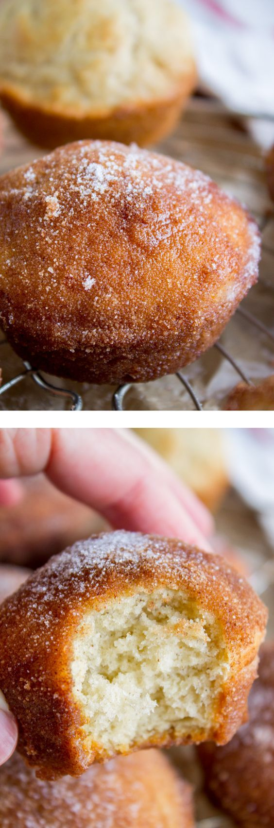 Did you make this recipe in Home Ec?? It's been around awhile, and with good reason because holy cow you dip the entire muffin in butter and then roll it all in cinnamon sugar. According to Betty Crocker, they are called French Breakfast Puffs. (...I think somebody in their test kitchen was feelin' fancy!) #muffins #cinnamon #sugar #snickerdoodle #puffs #bettycrocker #breakfast #easy #fast #quick #nutmeg
