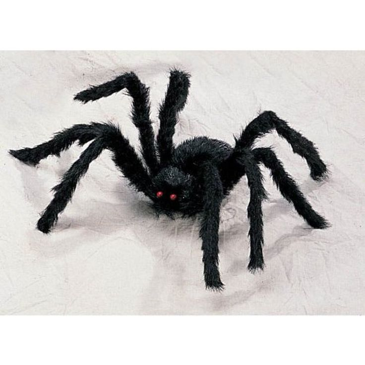 Large Poseable Creepy Black Hairy Spider - 26 inches in diameter *** Details can be found by clicking on the image. (This is an affiliate link) #EventPartySupplies