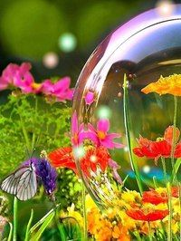 Пусть все ваши проблемы лопаются красиво , как мыльные пузыри!