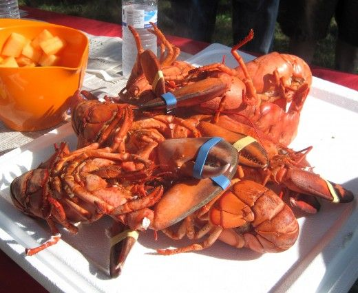 Cooking Lobsters: How to Host a Live Lobster Party
