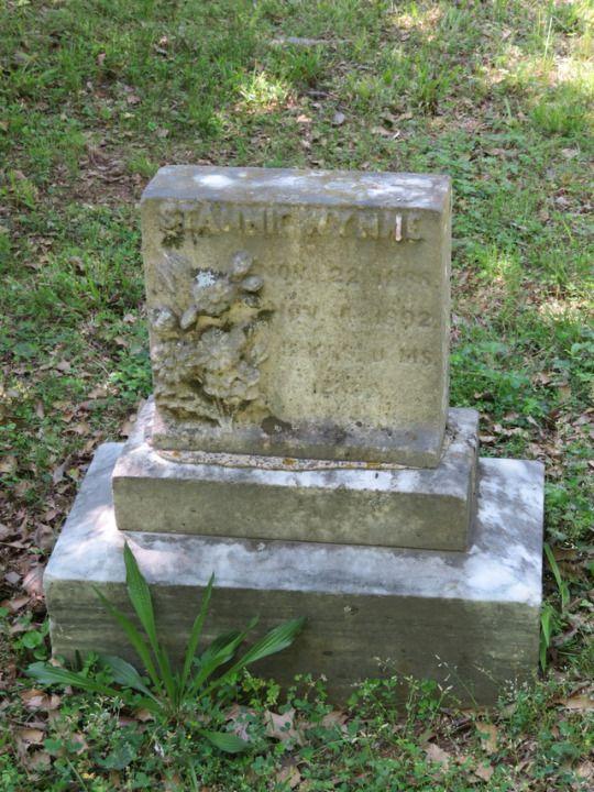 Stannie Wynne (1888-1892). Oakwood Cemetery, Raleigh, Wake County, North Carolina