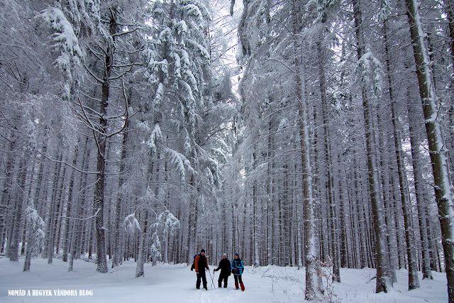 Nomád a hegyek vándora - természetjáró és túrafotós blog: Az év kilátója - a mi nyertesünk