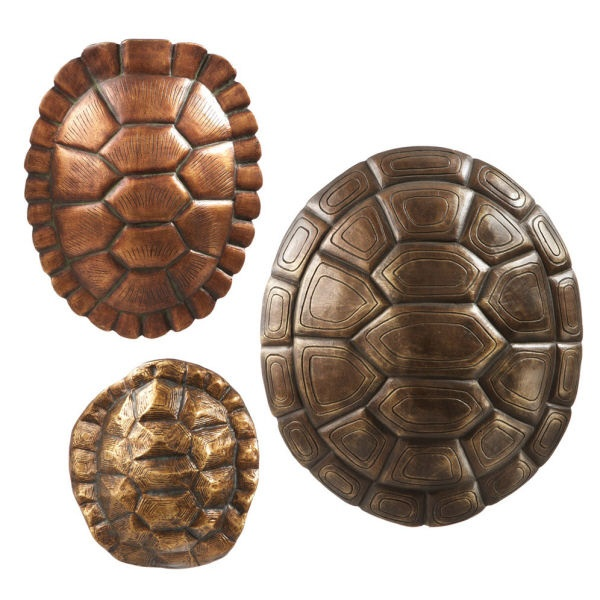 turtle shell wall decor set 3 | turtles | Pinterest ...