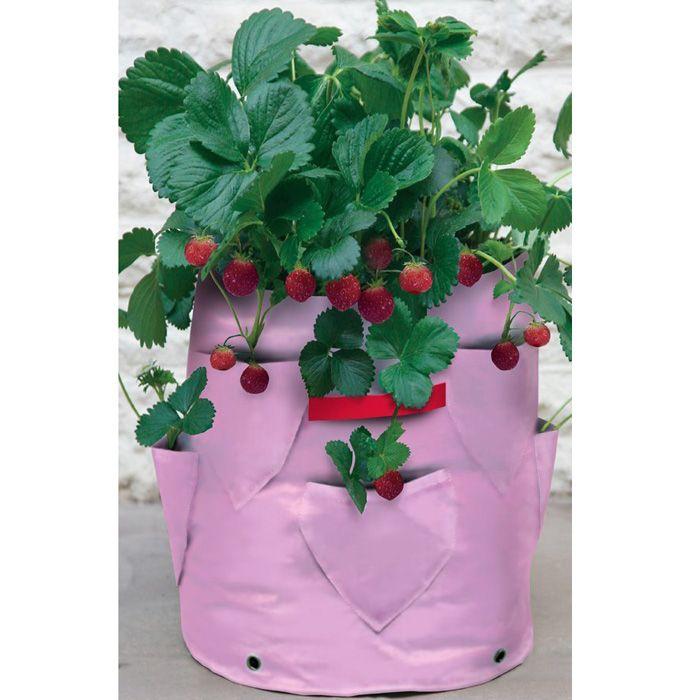 Ört- och jordgubbsodlingssäck, 2-pack, Odlingssäck för odling av örter och jordgubbar på balkong och terass