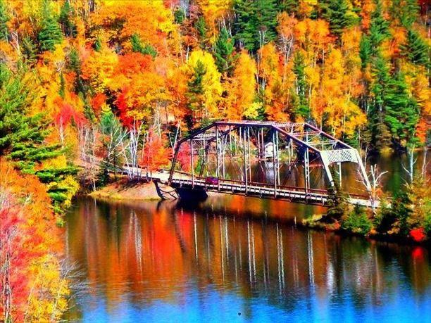 Pure Michigan Color