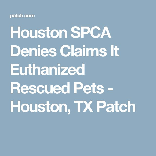 Houston SPCA Denies Claims It Euthanized Rescued Pets - Houston, TX Patch