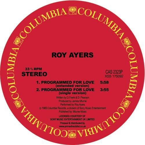 ROY AYERS | Programmed For Love