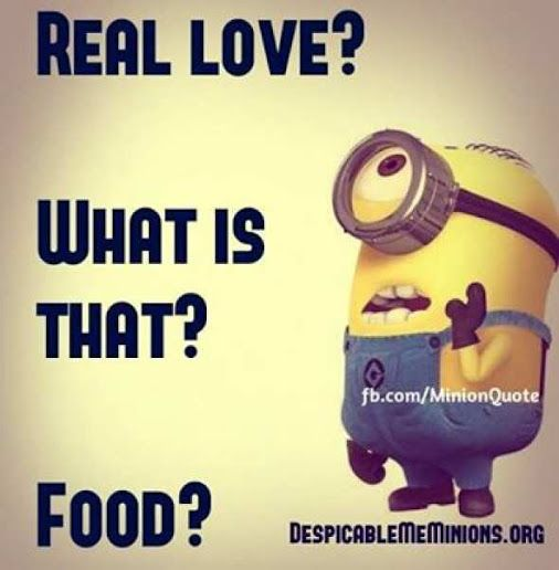 Funny Minion Quotes About School: 1000+ Minion Love Quotes On Pinterest