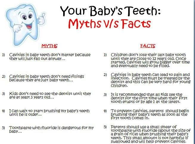 A child's health is the most important thing to a parent.  Did you know... A child's #baby teeth hold an important role in speech development. Come visit Us & know more. Here are some more #Facts and Myths on child's teeth. http://www.novadenttly.com/