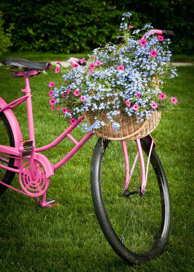 Photo About Bike With Flowers Decorating Front Yard Image Of Outdoors Pink Roses 21713213 Bike Planter Bicycle Front Yard Decor