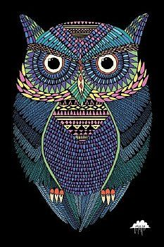 Magiczna Sowa - plakat 61x91,5 cm | 19,90zł
