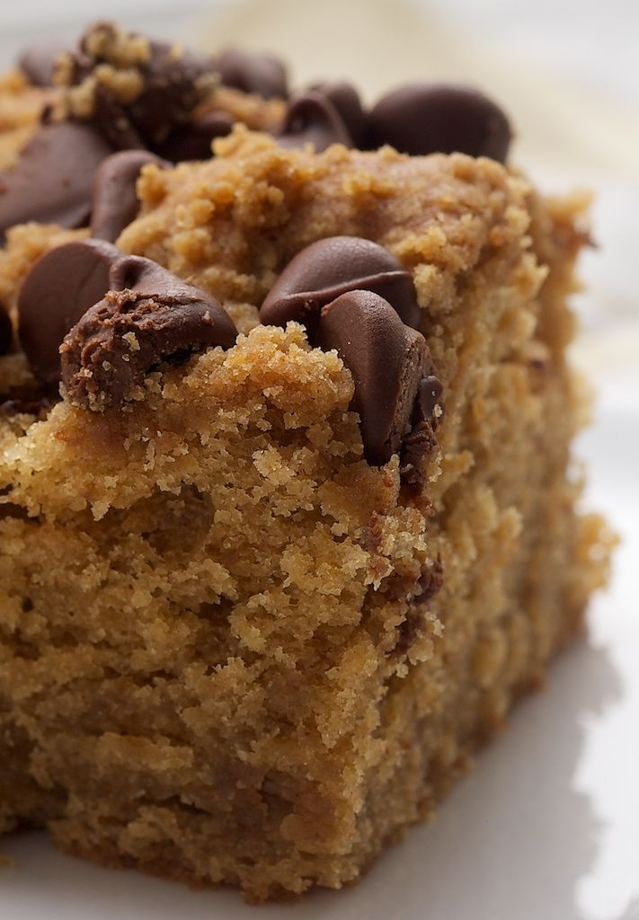 Peanut Butter Chocolate Chip Cake is a wonderfully simple cake just made for snacking! - Bake or Break