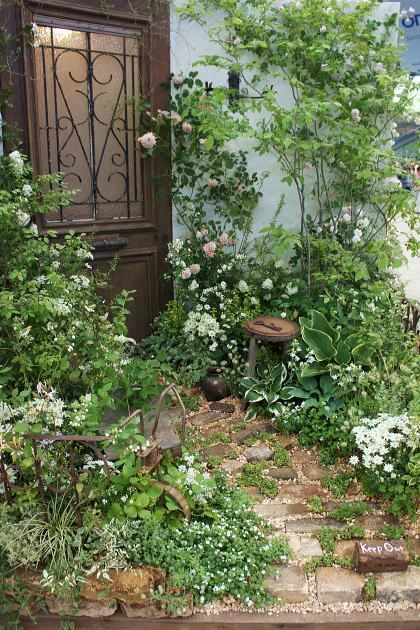 ほんの小さな庭の画像