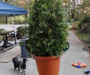 Shrub (Bush, Plant) costume