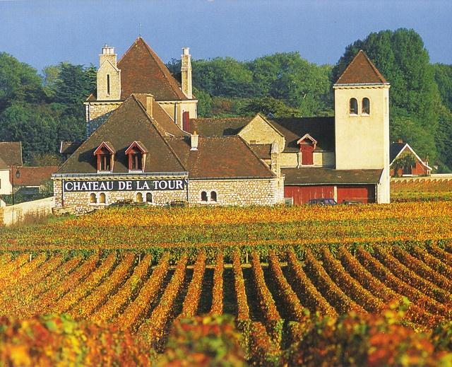 Cote d'Or, Burgundy, France