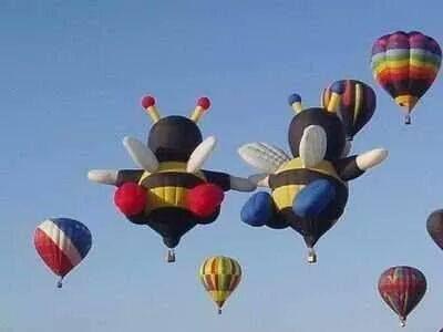 Sıcak Hava Balonları