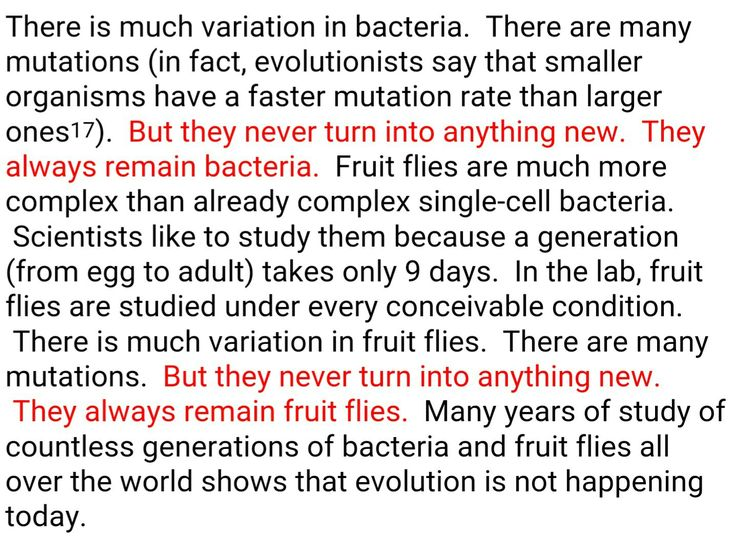 a comparison of the theory of evolution and theory of creationism Theistic evolution tries to harmonize the theory of evolution with bible teaching of creation does teaching of scripture about origins contradict evolution.