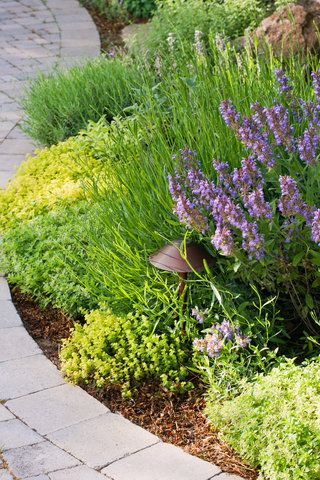 Garden Border Ideas Garden Pinterest Garden borders, Garden