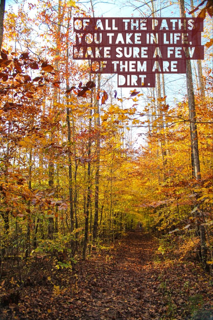 """""""Of all the paths you take in life, make sure a few of them are dirt."""" -quotes to hike by :) Frozenhead State Park, TN."""