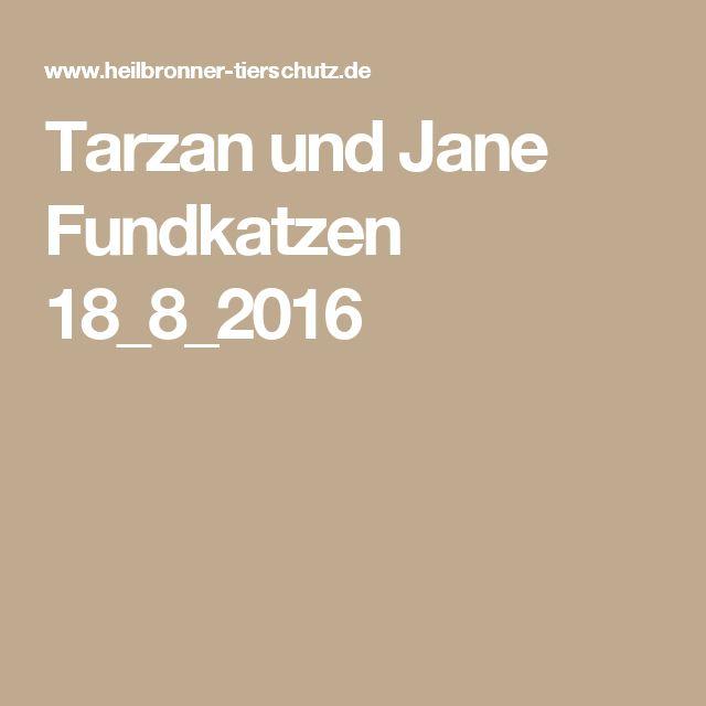 Tarzan und Jane Fundkatzen 18_8_2016