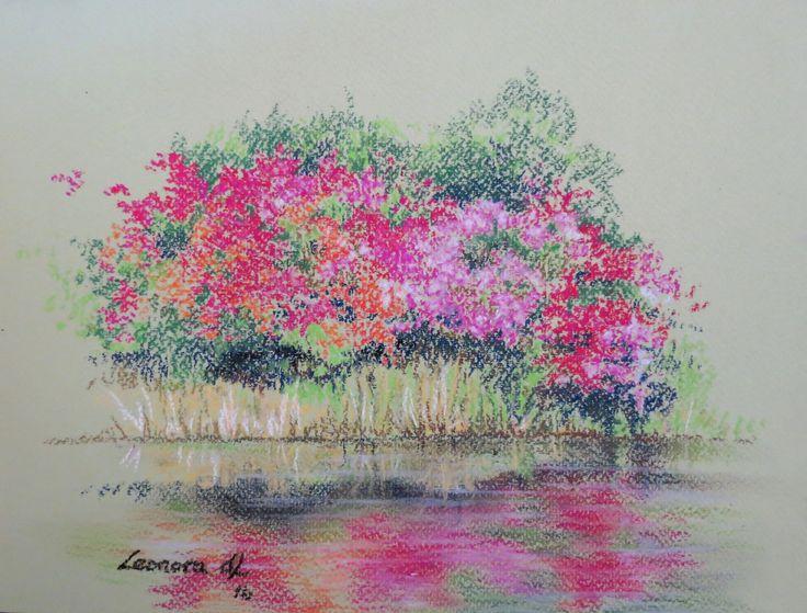 Leonora de Lange - Reflecting Azaleas. Pastels 30 x 23cm