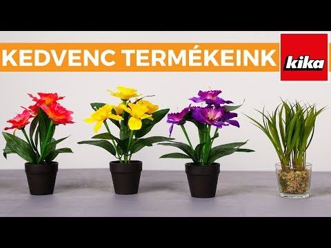 (18) Kedvenc Termékeink - Cserepes műnövények   Kika Magyarország - YouTube